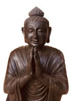 buddha yoga in mauritius